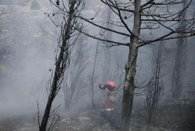 Φωτιές: Ποιοί ωφελούνται, ποιοί έχουν ευθύνες