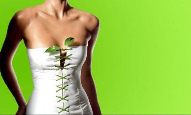 Ελέγξτε την όρεξη σας με βότανα