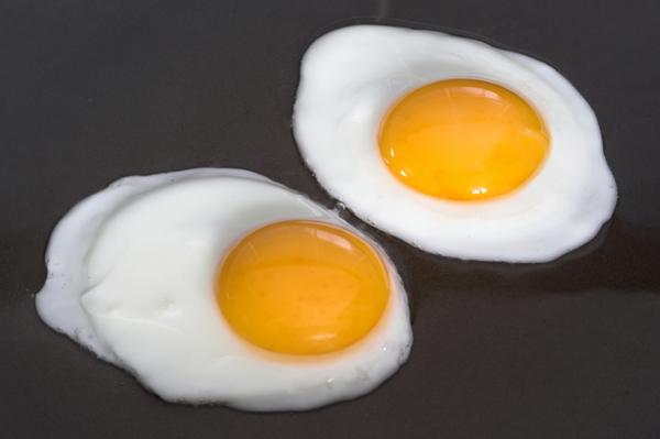 Γερμανός ευρωβουλευτής: Τα κράτη-μέλη της ΕΕ φταίνε για το σκάνδαλο με τα τοξικά αυγά