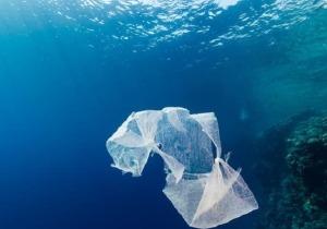 Image result for Μηχανικοί δημιούργησαν μη ρυπογόνες σακούλες, διαλυτές στο νερό - και φθηνές